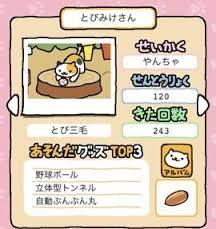 05_とびみけさん.jpg
