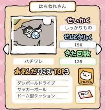 11_はちわれさん.jpg